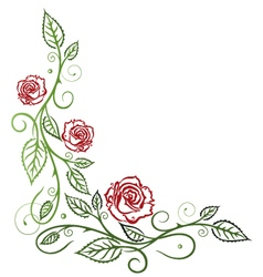 Roses floral vector