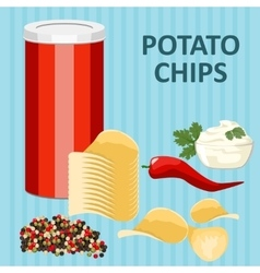Spicy potato chips vector image