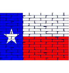 Texan painted wall flag vector
