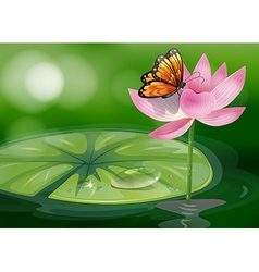 A butterfly at the top of a pink flower vector image vector image
