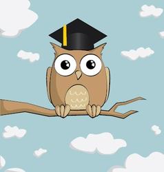 graduated cute cartoon owl vector image