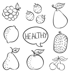 Doodle fruit hand draw collection vector