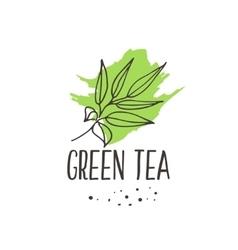 Green tea print vector