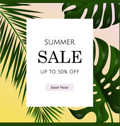sale poster with tropical leaf vector image