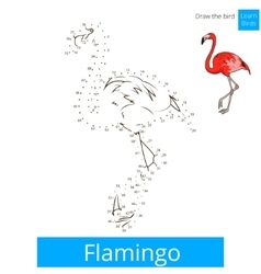 Flamingo bird learn to draw vector image vector image