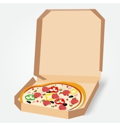 appetizing pizza in a cardboard box vector image