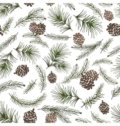 Christmas tree branchescone seamless pattern vector image vector image