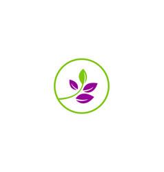 beauty green leaf logo vector image