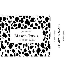 black and white business card template vector image
