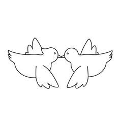 doves birds icon vector image