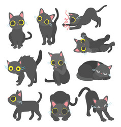 finn the black cat vector image