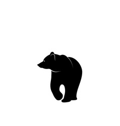 graphic print bear silhouette on white vector image