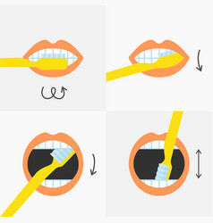 how to brush your teeth instructions 4 steps vector image