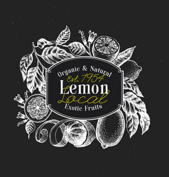 Lemon tree logo template hand drawn fruit vector