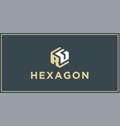 Rg hexagon logo design inspiration vector