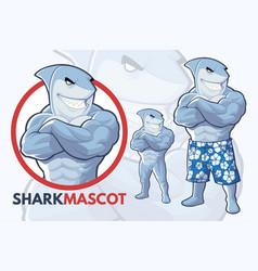 Shark mascot design vector