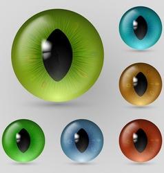 Eyes reptiles vector image vector image