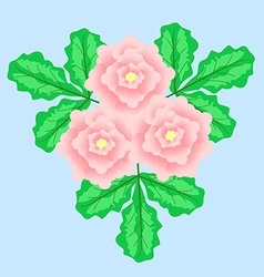 3flower vector image