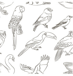 Bird collection pattern vector
