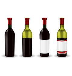 bottles of red wine collection vector image