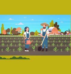 Couple farmers planting seedlings plants vector