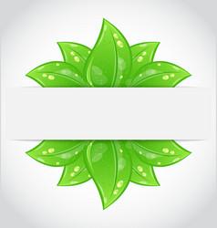 Bio concept design eco friendly banner vector image vector image