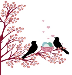 Birds with nest vector