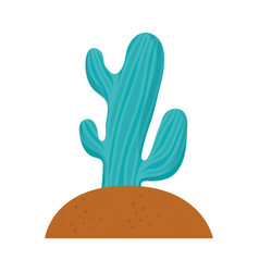 cactus in the soil vector image