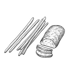 Ciabatta and bread sticks vector