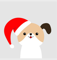 Cute dog face in red santa hat merry christmas vector