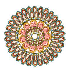 floral mandala color decoration bohemian vintage vector image
