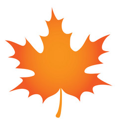 Orange maple leaf vector