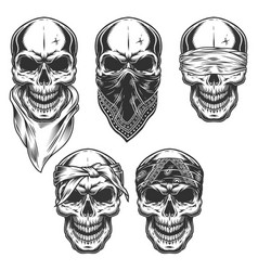 set of skull in bandanas vector image