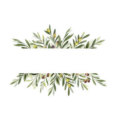 Watercolor banner olive branches and vector