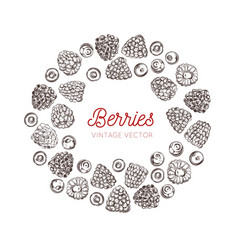 wildberries vintage frame hand drawn vector image