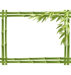 Bamboo frame background vector