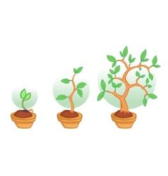 growing tree vector image vector image
