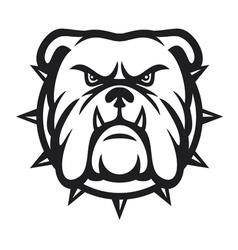 Bulldog head - angry bulldog vector image vector image