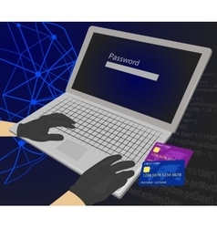 Hacker enters password with credit cards vector image