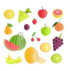 Set of Fruits Flat Design vector image vector image