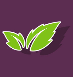 Fresh basil leaves icon sticker of basil leaves vector