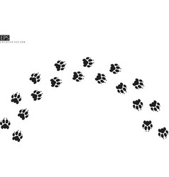 tiger paw prints silhouette vector image