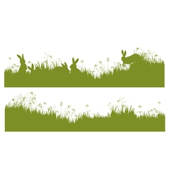 rabbits grass background vector image vector image