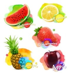 Fruit and berries watercolor set vector image