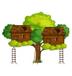 two treehouses on the tree vector image