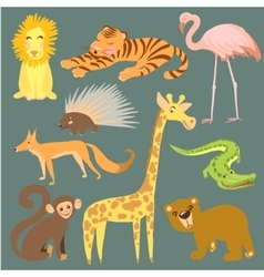 animal Zoo cute animals vector image