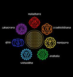 chakras set vector image