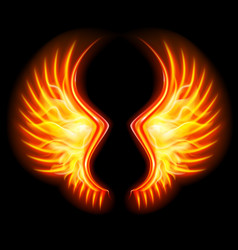 Fire wings vector
