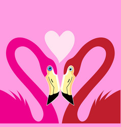 flamingos in love with a heart vector image