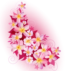 Greeting card or invitation with floral background vector